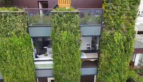cây xanh phủ kín tòa nhà