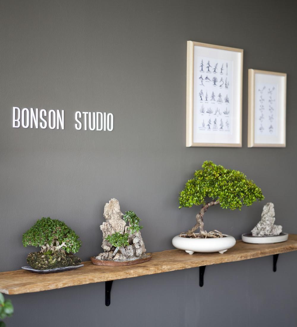phòng trồng bonsai