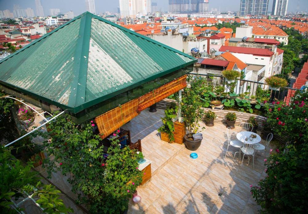 thiết kế khu vườn trên cao