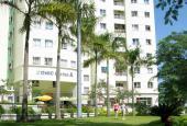 Cho thuê căn hộ chung cư Conic Đông Nam Á