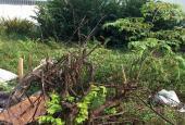 Bán đất KDC Phú Nhuận, đường 4, Hiệp Bình Chánh, DT: 7x17.5m ~ 3.5 tỷ