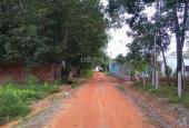Bán đất tại đường Mỹ Phước Tân Vạn, Xã Tân Định, Bến Cát, Bình Dương, DT 135m2, giá 295tr
