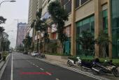 Bán căn hộ penthouse thông tầng tòa HP Landmark Hải Phát