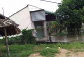 Bán gấp 6 lô đất 5x20m giá 265tr/nền gần chợ An Bình, Biên Hòa, Đồng Nai