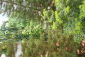 Phòng sáng thoáng, đủ đồ gần cv nước, ao sen, thung lũng hoa