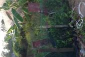 350TR/5X19 ĐẤT THỔ CƯ ĐẠI PHƯỚC, SHR, GẦN CHỢ, CÁCH QUẬN 2 ĐÚNG 3KM, KHÔNG DÍNH QUY HOẠCH