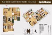 Chủ đầu tư bán căn hộ 134,8m2 4 phòng ngủ dự án Capital Garden 102 Trường Chinh
