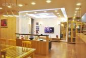 Cho thuê chung cư Mandarin Garden Hoàng Minh Giám, Cầu Giấy (2PN, 3PN, 4PN). Giá rẻ, HĐ chính chủ
