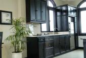 Cho thuê căn hộ cao cấp Phạm Văn Đồng, DTSD 80m2, 1PN, tiện nghi, giá 19 triệu/tháng