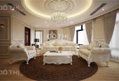 Chính chủ bán căn hộ chung cư cao cấp tại Hòa Bình Green City 505 Minh Khai