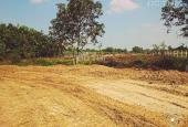 Đất xây nhà vườn, BT nghỉ dưỡng P.Tương Bình Hiệp, Thủ Dầu Một, DT: 10x63m (20x63m), giá 1,9 tr/m2