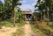 Bán 2.4 ha đất làm vườn và ao nuôi cá - Giá 1.8 tỷ - Diên Khánh - Khánh Hòa