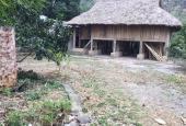 Bán 2000m2 đất thổ cư, có nhà sàn tại Liên Sơn, Lương Sơn, Hoà Bình