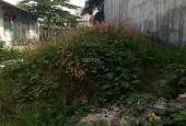 Bán đất đường 339, Phước Long B, quận 9, giá 25 tr/m2