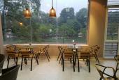 Bán nhà phân lô Nguyễn Chí Thanh, Huỳnh Thúc Kháng, Đống Đa, 45m2 x 5 tầng, KD cafe, giá 8.5 tỷ