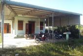 Bán nhà cấp 4 giá rẻ tại Hàm Cường, Hàm Thuận Nam