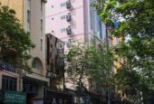 Bán gấp nhà khu vip đường Đoàn Thị Điểm, P1, Phú Nhuận 8.2mx17m, giá 18,95 tỷ