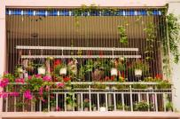 Ban công hoa 5m2 ngập tràn sắc hoa