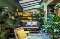 Mang sắc xanh thiên nhiên vào nhà bạn