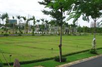 Quy định diện tích tối thiểu để tách thửa đối với đất trồng lúa?