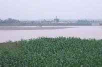 Phê duyệt giá đất làm cơ sở tính tiền thuê đất đối với dự án khai thác mỏ cát tại bãi nổi sông Hồng