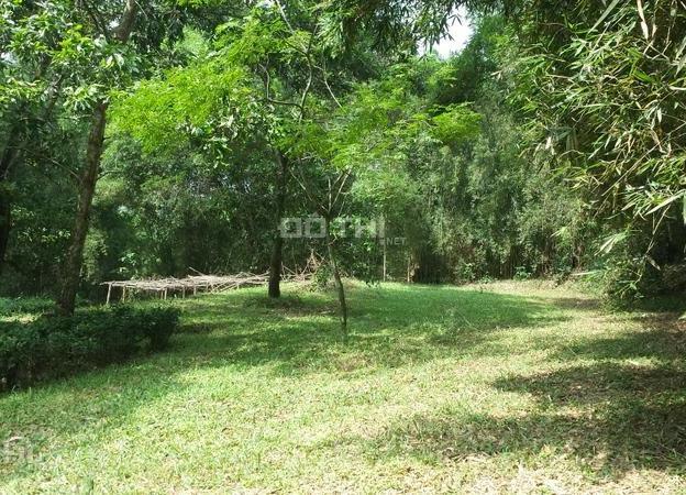 Bán khu Resort của người Pháp, Lương Sơn, Hòa Bình, 7800m2, giá 4,5 tỷ 7511939