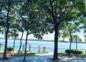 Bán nhà mặt phố Nguyễn Đình Thi, Tây Hồ, diện tích 93m2 mặt tiền 11m 4 tầng giá 65 tỷ. 0961068918