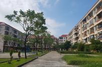 Đà Nẵng: Việc chuyển nhượng tại 42 chung cư Nhà nước là phạm luật