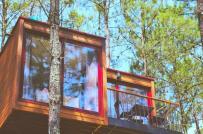 Nhà trên cây giữa rừng cho những ai muốn chạy trốn thành phố ồn ào