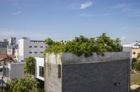Nhà Thắng - ngôi nhà cho cây xanh ở Đà Nẵng