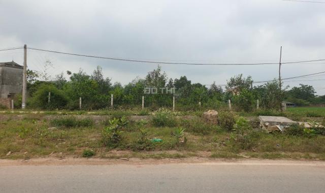 Chính chủ bán đất thôn Thái Lai, Minh Trí, Sóc Sơn, làm nhà nghỉ dưỡng, nhà xưởng, giá rẻ, 2220m2