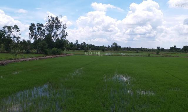 Bán đất công huyện Đức Hòa giá rẻ, 1470m2 xã Hòa Khánh Nam. Giá 1 tỷ 300 triệu