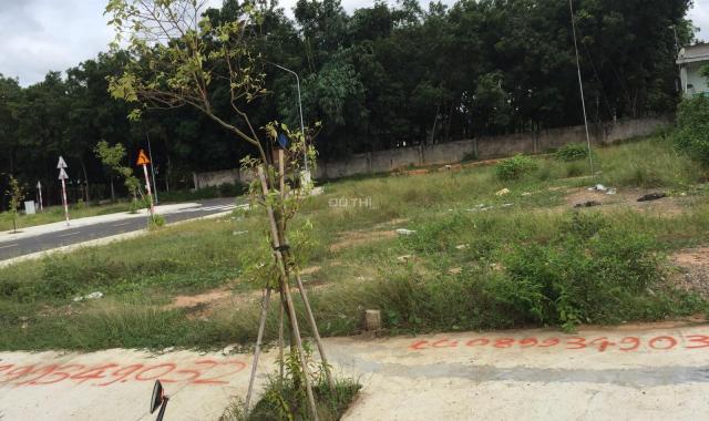 Cần bán gấp lô đất chính chủ tại dự án Tuấn Điền Phát 1 -gần chợ Vĩnh Tân, giá hạt dẻ