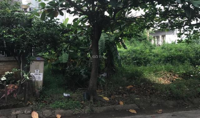 Đất 7x17m, giá 67 tr/m2 rẻ nhất khu vực dự án Phú Nhuận đường Số 25, phường Hiệp Bình Chánh