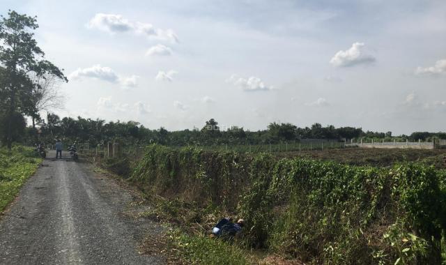 Bán đất tại đường Vườn Thơm, Xã Bình Lợi, Bình Chánh, Hồ Chí Minh diện tích 4500m2, giá 13.5 tỷ
