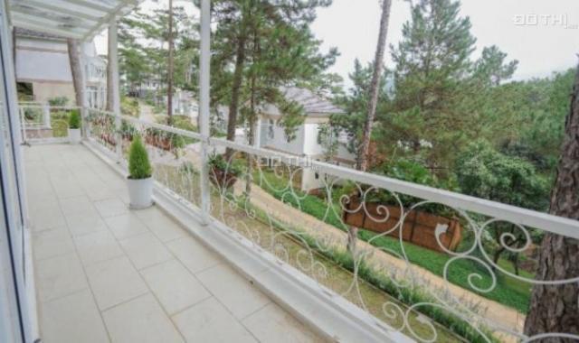 Biệt thự siêu view toàn thành phố Đà Lạt, Đồi Huy Hoàng, Phường 8, Đà Lạt