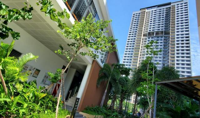 Rẻ thật rẻ căn hộ Palm Heights, giảm giá cực sốc 2PN & 3PN rẻ hơn thị trường 300tr