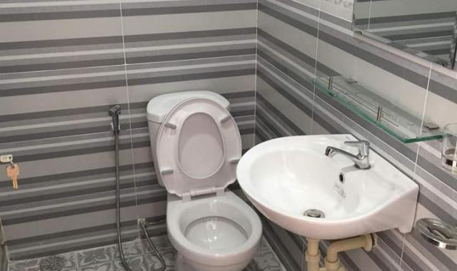 Cho thuê căn hộ mini đẹp giá rẻ,, P. Tân Quy, Quận 7, TP. HCM