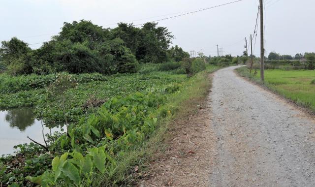 Bán đất xã Trung An, diện tích: 1770 m2, giá 6.2 tỷ