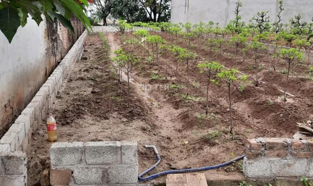 Bán gấp mảnh đất ở Thôn Vĩnh, Xã Thư Phú 82m2 - 852tr