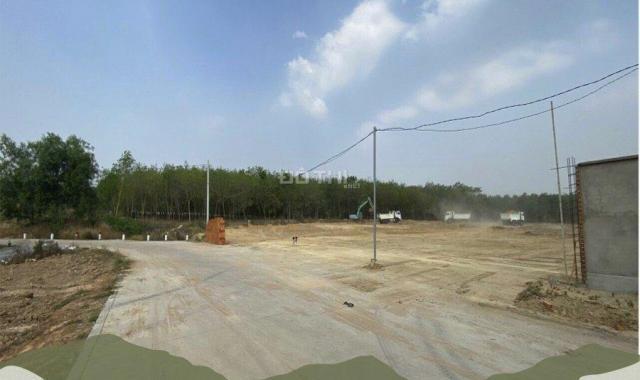 Bán đất 1000m2 Bàu Bàng - sổ sẵn giá rẻ