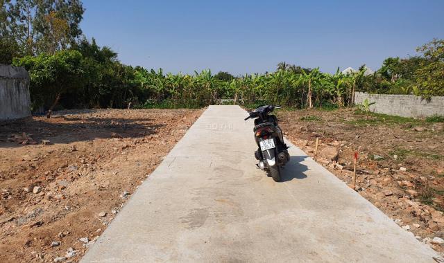 Lô đất đầu tư siêu đẹp ở Hòa Nghĩa, Dương Kinh, Hải Phòng