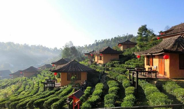 Bán rẻ lô nhà đất gần 6ha giá 115 nghìn/m2 Mường Sang - Mộc Châu view đồi cực đẹp