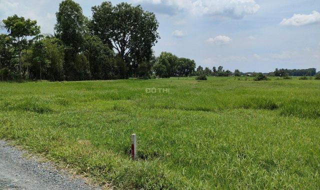 Bán đất vườn, quy hoạch khu dân cư giá rẻ Củ Chi, TPHCM
