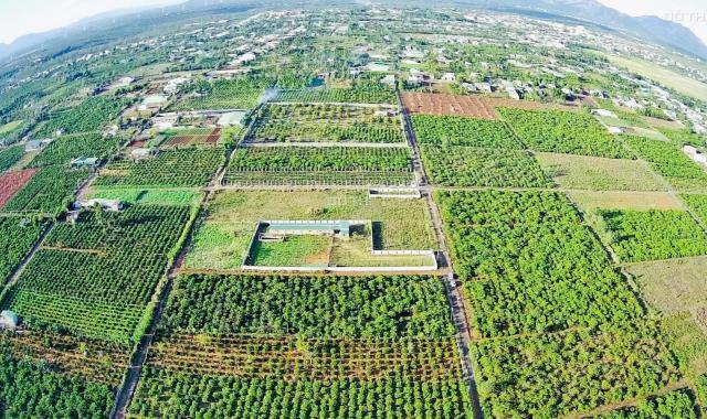 Bán đất nông nghiệp phường Yên Thế - Pleiku 35 triệu/m ngang