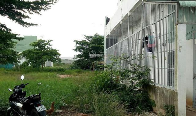 Mở bán 15 nền đất khu dân cư Trần Văn Giàu, Bình Chánh, đối diện bệnh viện Chợ Rẫy