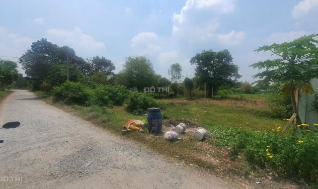 Bán đất Củ Chi giá rẻ, mặt tiền đường nhựa xe tải, diện tích 2171m2, xã Tân Thông Hội, Hồ Chí Minh