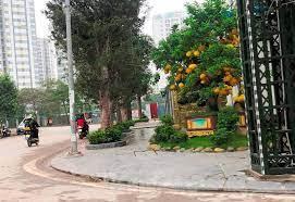 Mặt phố Tây Nam Linh Đàm, kinh doanh đỉnh, vỉa hè, ô tô tránh dừng đỗ ngày đêm