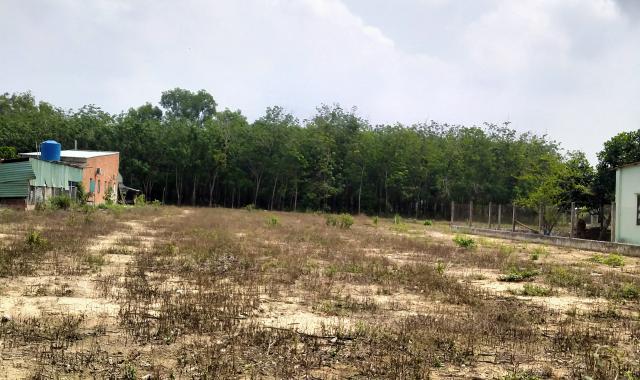Bán đất mặt tiền tại Bàu Bàng, Bình Dương, chính chủ, sổ hồng, thổ cư