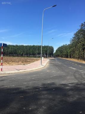 Bán đất sổ đỏ sát chợ Hội Nghĩa, liền kề KCN Nam Tân Uyên, tặng 15 chỉ vàng SJC NH hỗ trợ vay